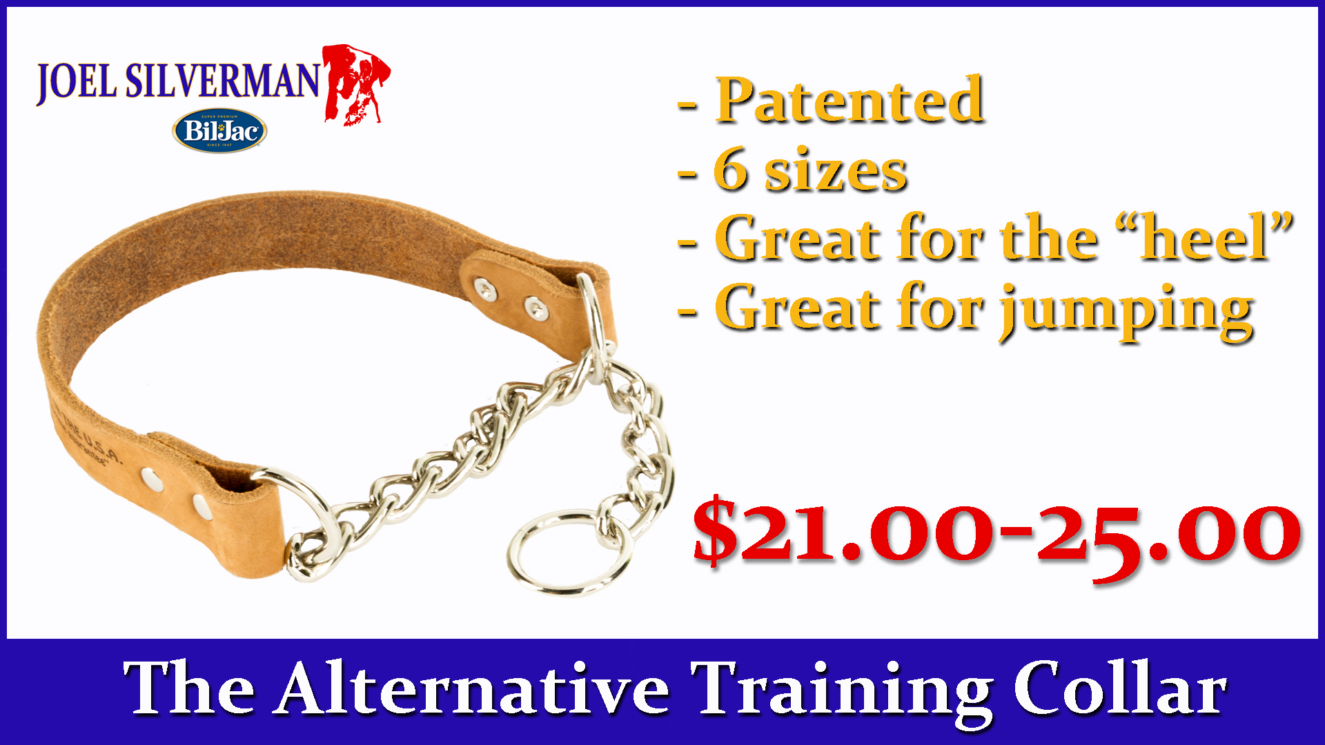 Joel Silvermans Alternative Training Collar