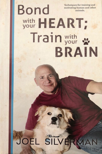 Bond With Your Heart; Train With Your Brain Book (Hardcover)