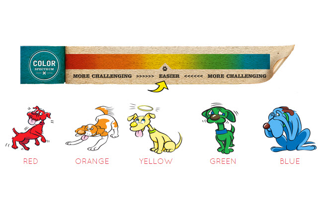 What Color is Your Dog?? – Official Joel Silverman Website