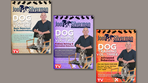 JoeSilverman_DVDS_Shopping