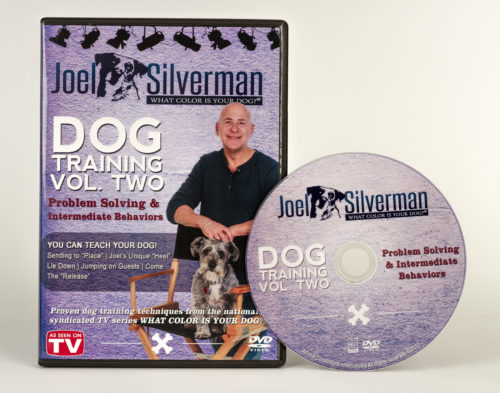 Joel Silverman's Intermediate Dog Training & Problem Solving – Volume 2 (2015)