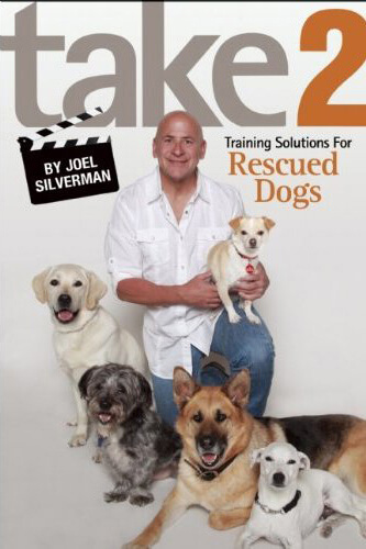 Take 2: Training Solutions For Rescued Dogs (Paperback)