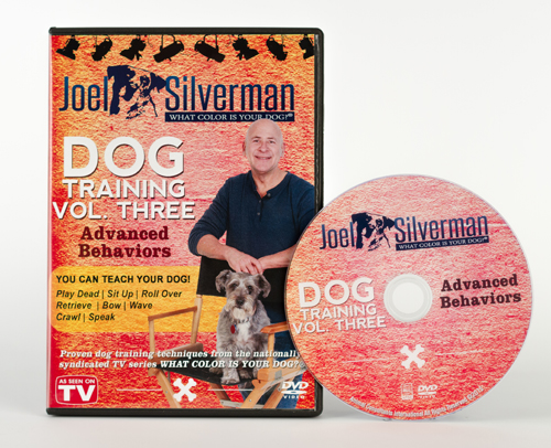 joel silvermans advanced behavior dog training dvd
