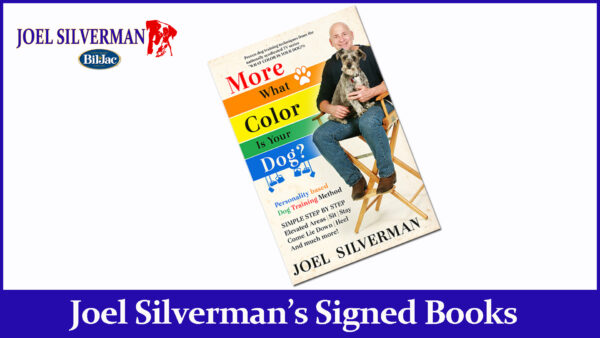 joel silvermans more what color is your dog? book