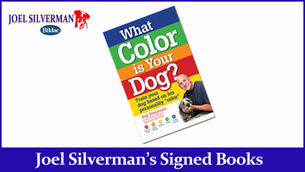joel silvermans what color is your dog? book