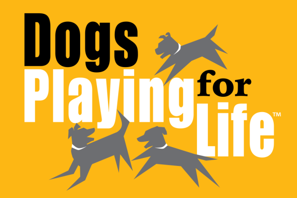 Dogs Playing For Life – Open Workshop – Feb 22 & 23, 2019