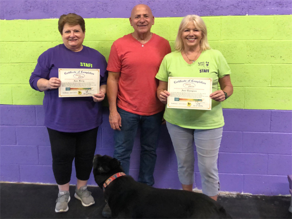 Joel Silvermans Basic Dog Trainer Certification Course